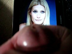 tribute to gwyneth paltrow