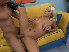Charming young woman Brandy Blair gets her lactating snatch pummelled