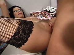 Dark haired in black fishnets liza assfucked by dude