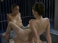 Tribbing and scissoring 2