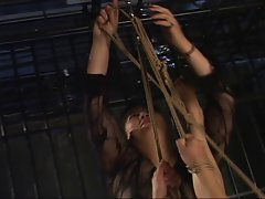 MILF's Candling by 3 Seductive japanese Queens