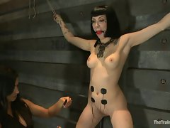 Dominatrix Isis Love wires up Asphyxia for amuse oneself
