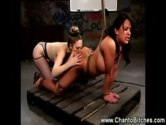 Bound tart getting face full of snatch from her master