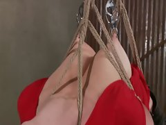 Blondie bondage BDSM girlie sadisticly treated