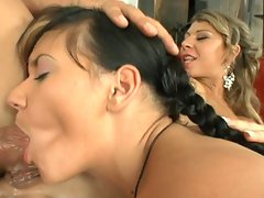 Camerom Ferrari, Kristy Lust and lad