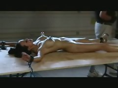 waxed and bound ANGE VENUS