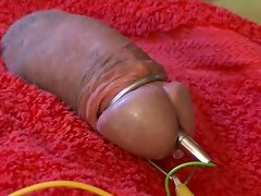 electro estim fun 098-20150509 part-2-hard phallus
